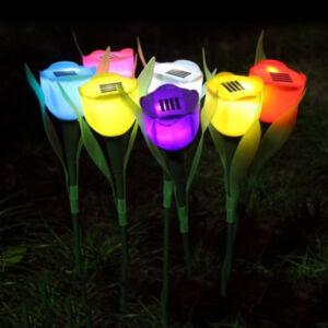 Szolárlámpa tulipán